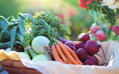 Build Resilience Through Nutrition